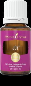 Joy-2-111x300