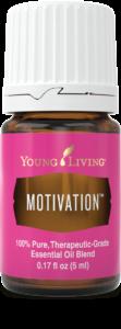 Motivation-2-112x300