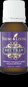 Shutran-2-99x300