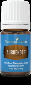 Surrender-2-112x300