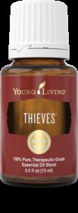 Thieves-2-111x300