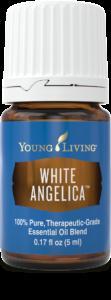 White-Angelica-2-112x300